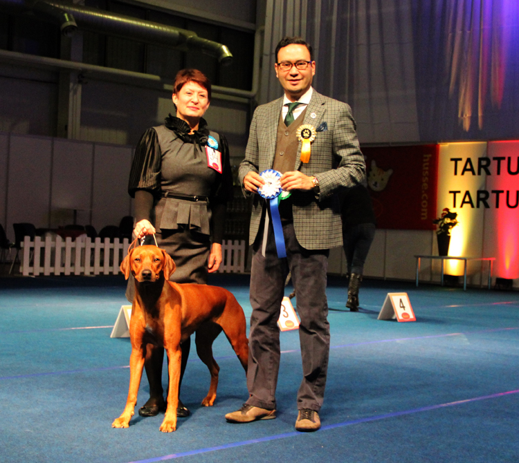 ex 1 in champion class, Best Female (BOS), CACIB, champion of Estonia,    has closed a title INTERCHAMPION